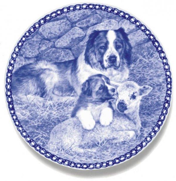 Caucasian Sheepdog