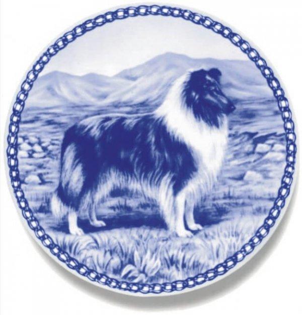 Collie - Rough - Blue Merle