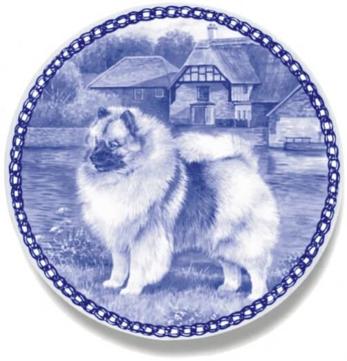 Keeshond(Wolfspitz)