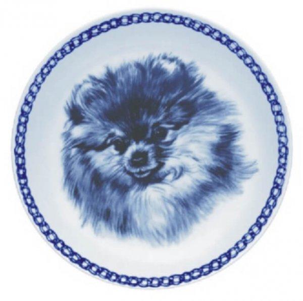 Pomeranian